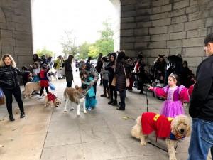 Halloween Pet Parade 2018