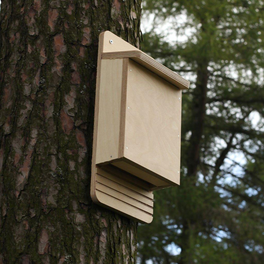 Bat Box Building