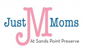 Just Mom's Logo Less Text