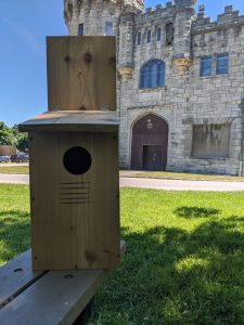 Photo of an owl box in front of Castle Gould