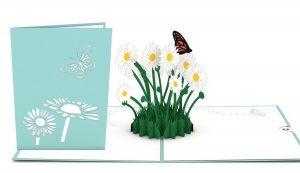 3D card with Daisy Patch