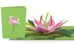 3D card with daylily