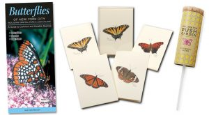 Gift package with butterfly note cards, guide for butterfiles in new york, seed kit