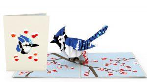 Blue Jay 3D Card