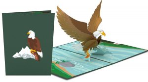 3D Bald Eagle Card