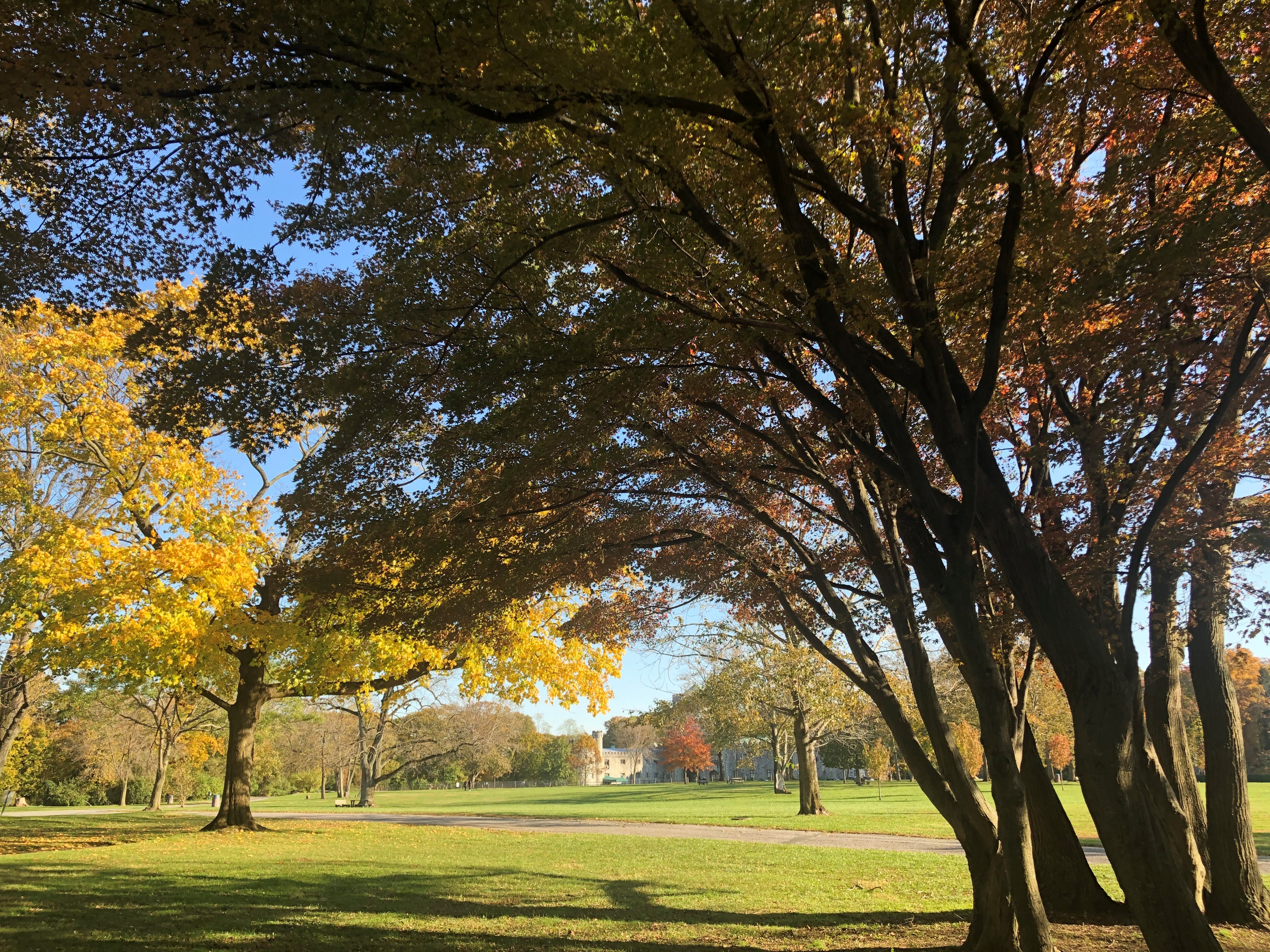 Fall colors on the Great Lawn including Castle Gould